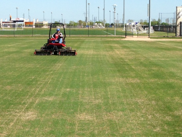 Mowing For 1st Time on Day 16