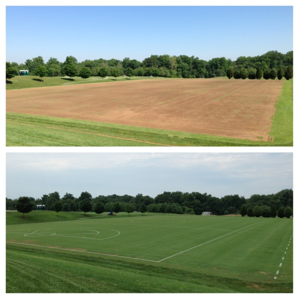 Field Comparisons In 6 Weeks Before 34 Lacrosse Games