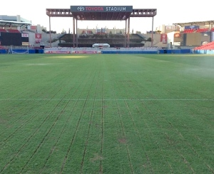 Recycling dresser lines from big blades on Latitude bermudagrass following dragging
