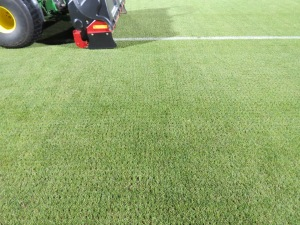 Rapid tine aeration w solid tines to vent surface following heavy play