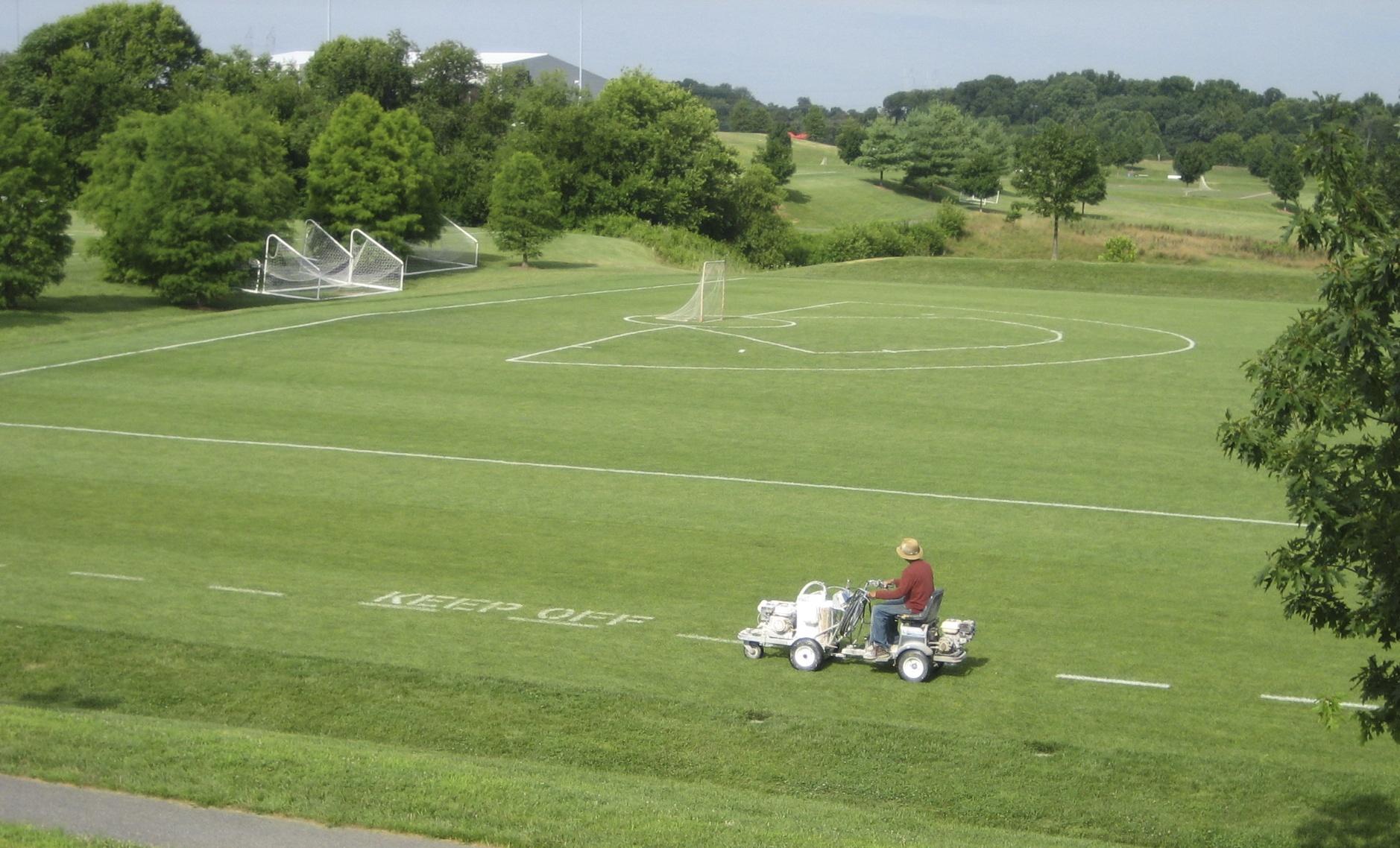Sports Fields Growing Green Grass